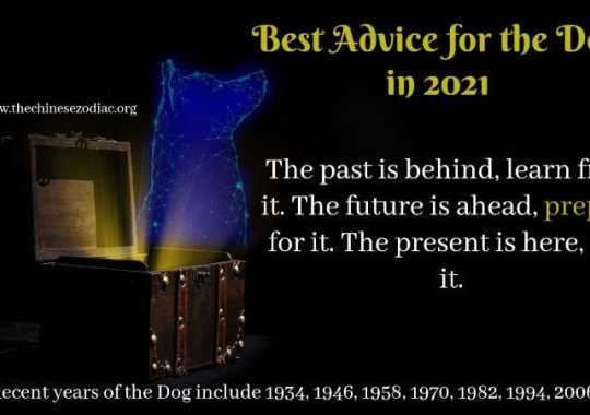 Year of the Dog – 2021 Horoscope & Feng Shui Predictions