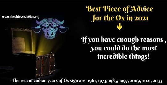 Ox Horoscope 2021 & Feng Shui Forecast