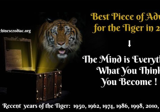 Year of the Tiger – 2021 Horoscope & Feng Shui Forecast
