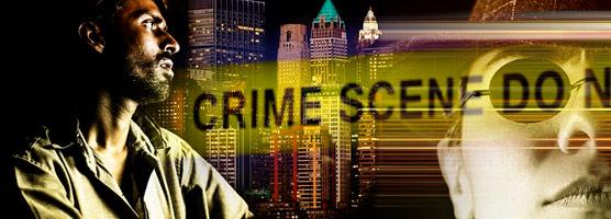 Combatting Crime: Diagnosis & Prognosis
