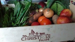 Christmas Farm organic vegetable box
