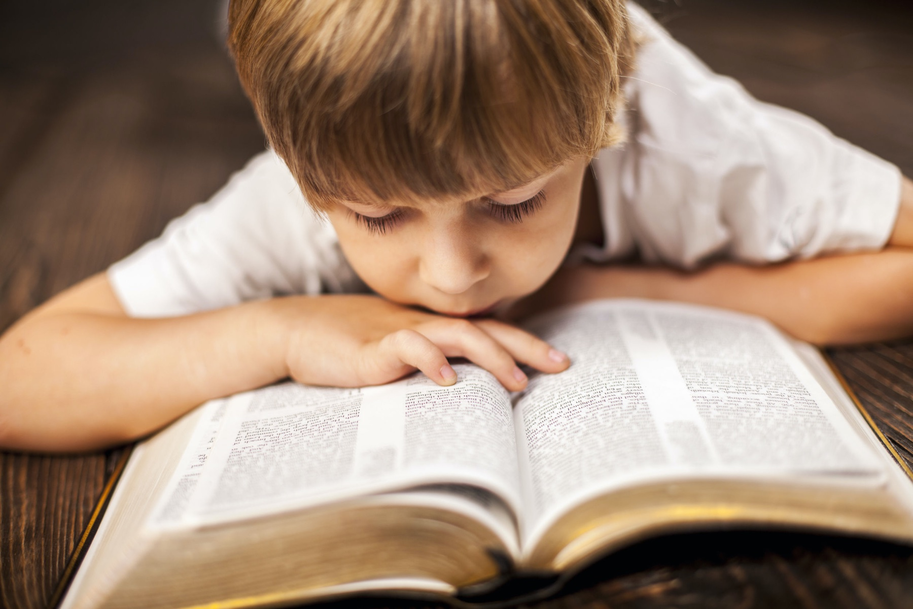 boy studying the scriptures.