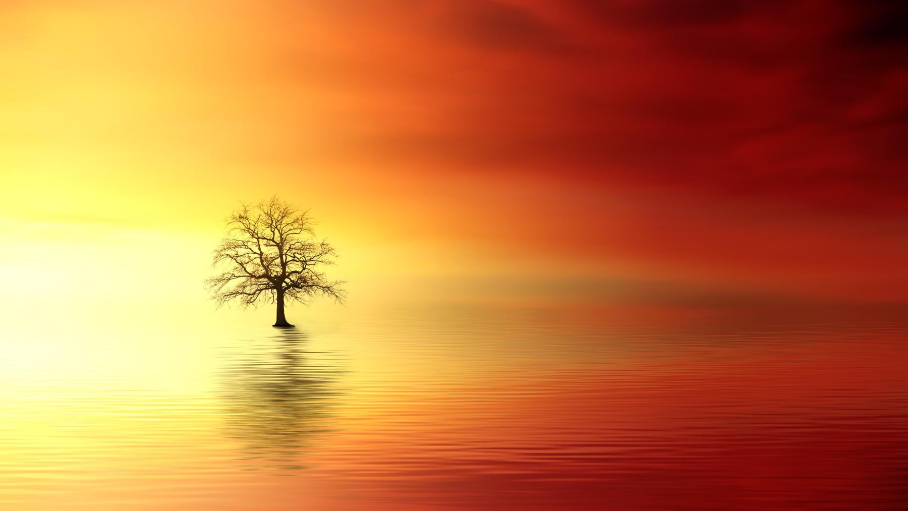 sunset-3156440