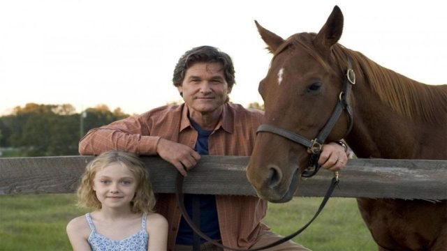 Horse Racing Movies   8 Best Horse Movies of All Time ...