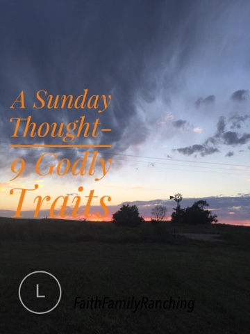 A Sunday Thought~ 9 Godly Traits