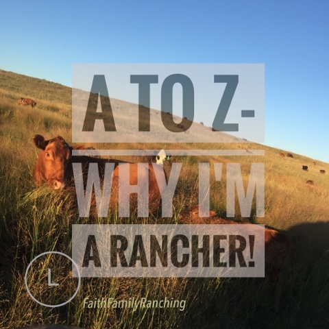A To Z-Why I Am A Rancher!