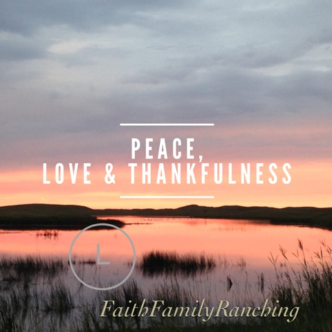 Peace, Love & Thankfulness