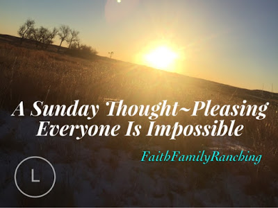 A Sunday Thought~Pleasing Everyone Is Impossible