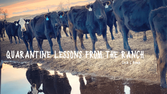 Quarantine Lessons From The Ranch