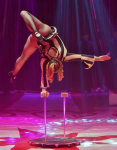 The back view of a woman balancing upside down by one hand on top of a metre high balance cane. The cane is one of a pair, which stand on a red star in the circus ring floor. The background is lit in pinks and purples. She wears a black and white striped long-sleeved leotard with flared cuffs. It's decorated with rhinestones, and she wears fishnet tights with black ballet pump shoes. Her hips are tilted to one side so one leg points down towards the ground, the other is bent at the knee with her foot behind her.