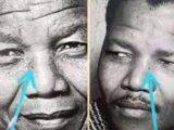 Who is Gibson Makanda, Biography, Age, Nelson Mandela Conspiracy Theory, Net Worth, Photos, Wikipedia