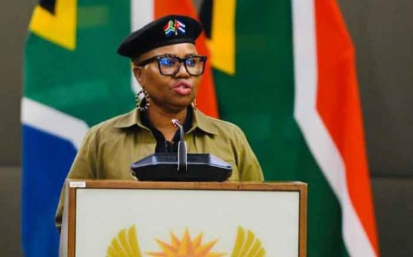 Lindiwe Zulu Biography, Age, Net Worth, Husband, Twitter, Married, Speech Today, Qualifications, Pictures, Contact Details
