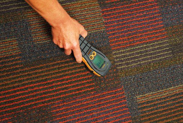 aquant carpet