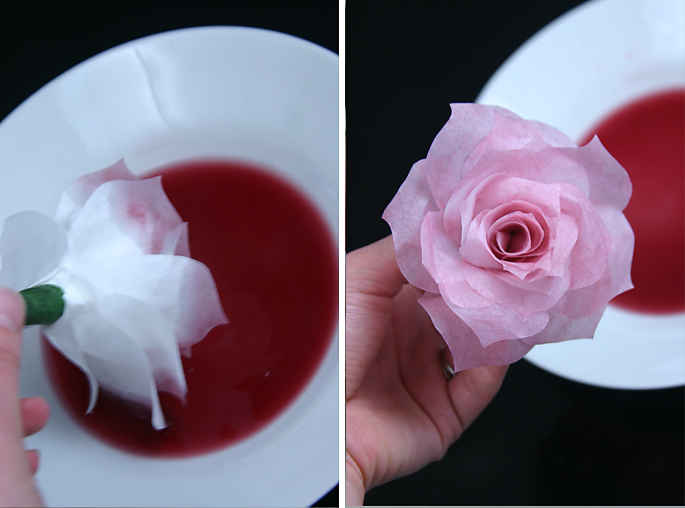 dying-coffee-filter-roses