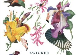 Zwicker – Songs of Lucid Dreamers