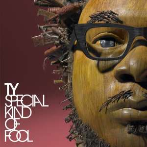 TY - Special Kind Of Fool - BBE Music