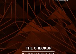 The Checkup - In Your Soul EP