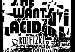 Koletzki & Schwind - She Wants Acid