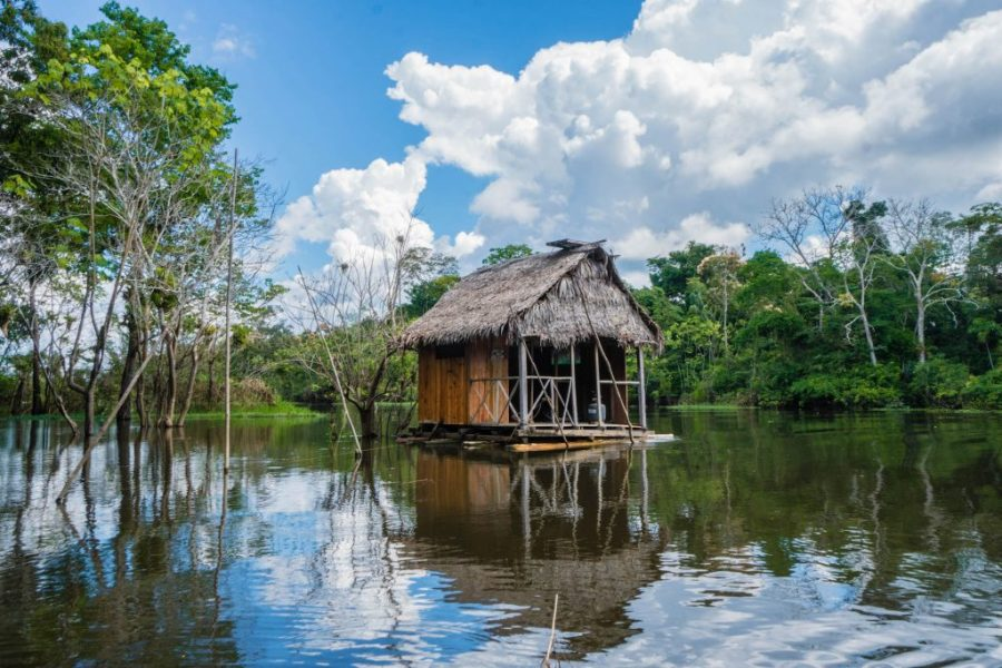 photos of Peru; Iquitos Amazon Jungle