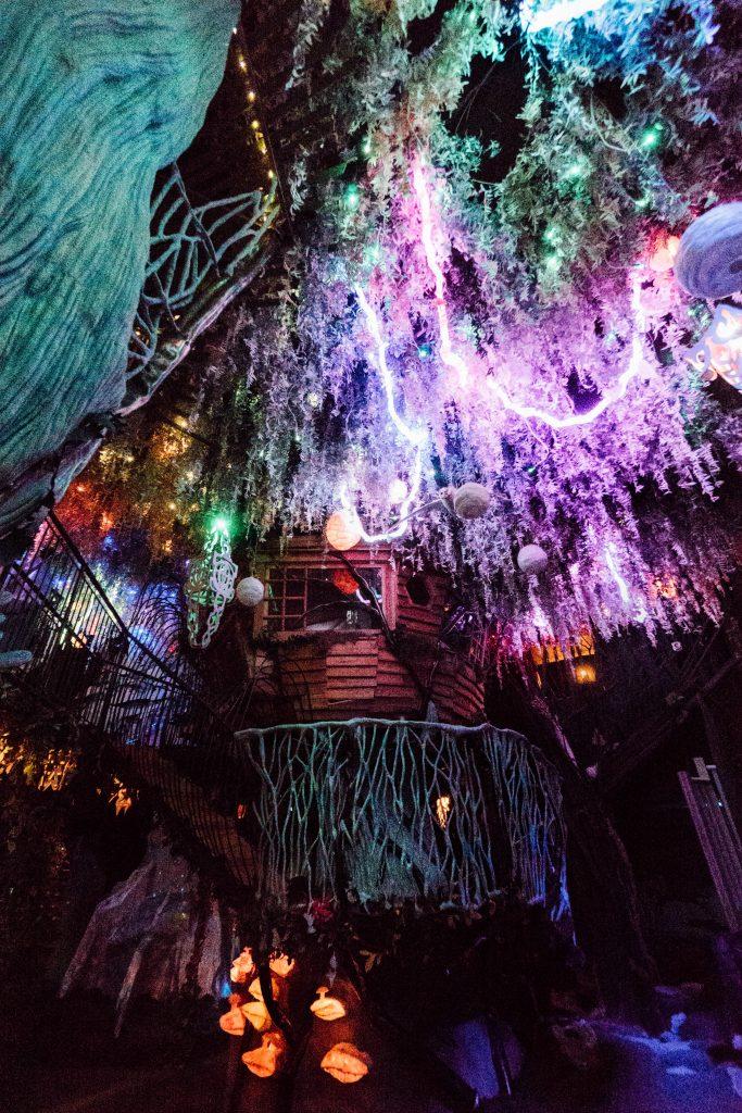 24 hours in Santa fe; Meow Wolf treehouse inside