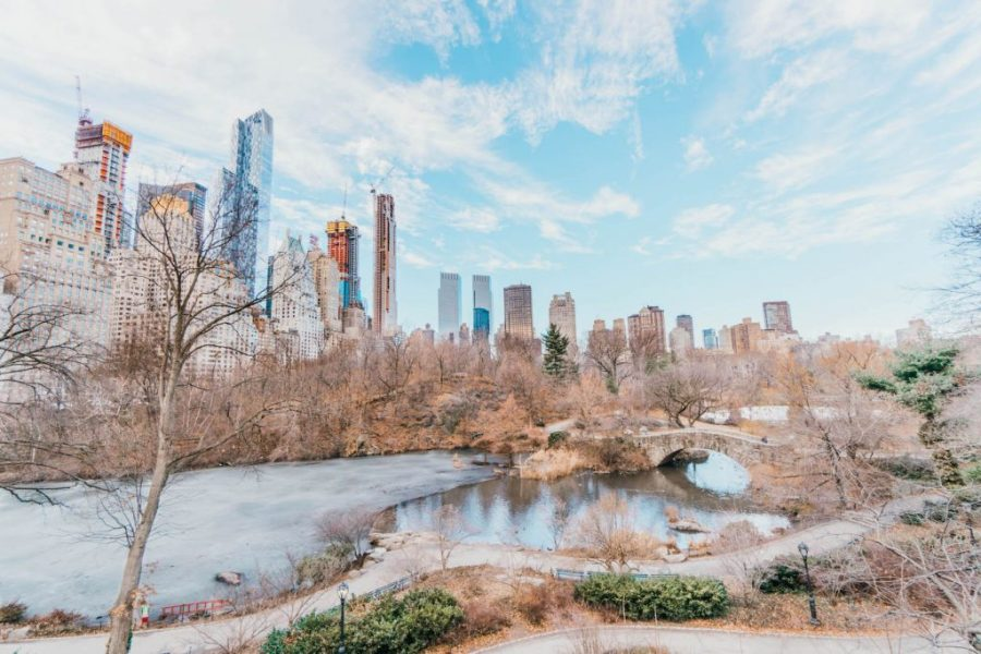 48 hours in New York; central park winter
