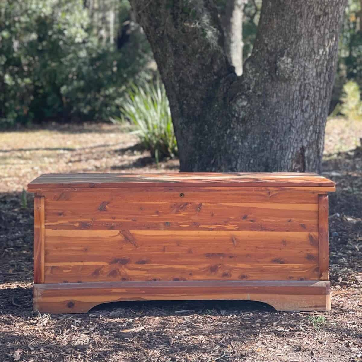 Refinishing a cedar lane hope chest from orange and red wood tones to a natural whitewashed color.