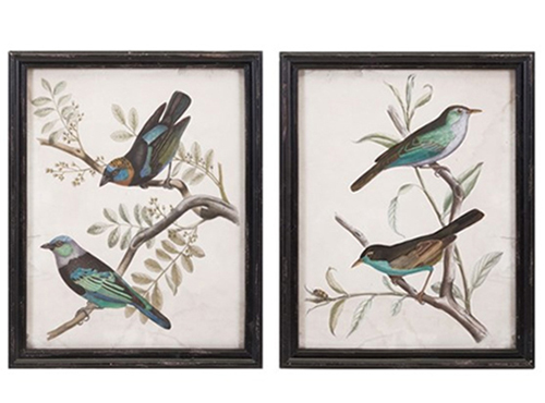 framed prints of masked tanager birds