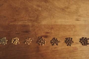 Coffee Bean Types