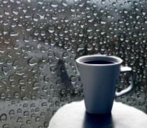 coffee-rain-brazil-2013