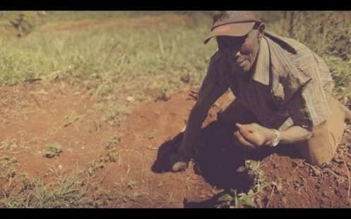 Verve Kenya Coffee Video