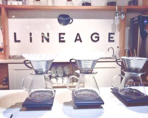 Lineage Coffee Orlando