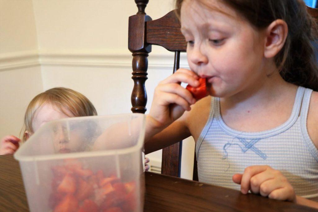 florida fresh produce strawberries