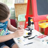 Microscope Experiments for Kids