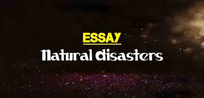essay on natural disasters for students  the college study