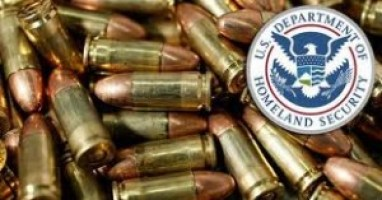 Who are the massive amounts of DHS acquired bullets for?