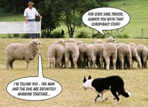 sheep conspiracy