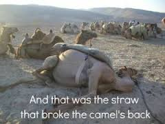 straw that broke the camels back