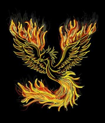phoenix-1440452_960_720