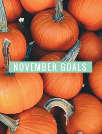 november-blog-and-personal-goals-rachel-ritlop-the-confused-millennial