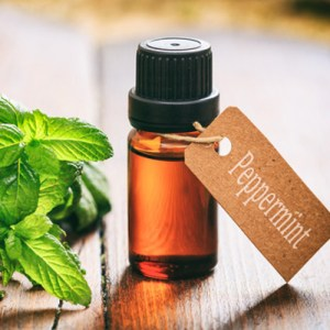 keep your mouth clean with peppermint oil