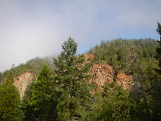 Six Rivers National Forest 5