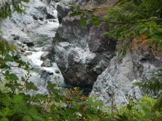 Six Rivers National Forest 2
