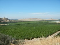 California Farm Land