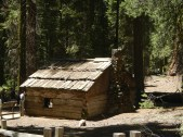 Giant Sequoia National Forest Gamlin Cabin