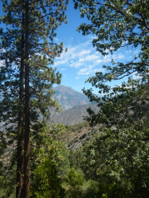 Kings Canyon National Park From the top 2