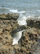 Blowing Rocks Jupiter Florida 17