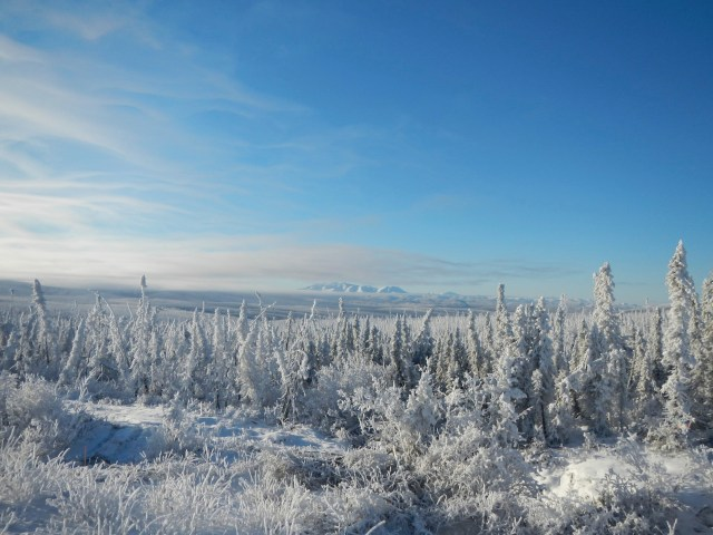 The view on a snow covered Dalton Highway