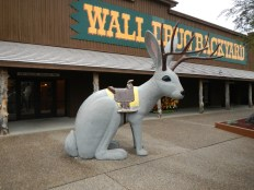 The Infamous Jackelope Statue in Wall Drug | Wall SD