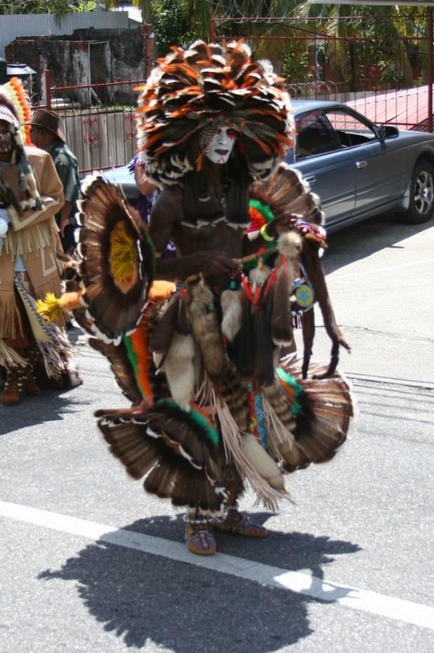 A Bustle Dancer - Carnival in Trinidad