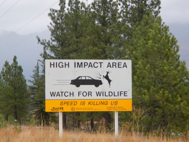 Watch out for wildlife - Canadian Road Signs Photo 2